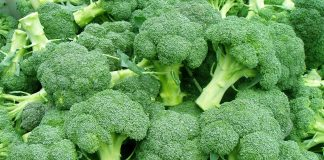Broccoli Images.jpg