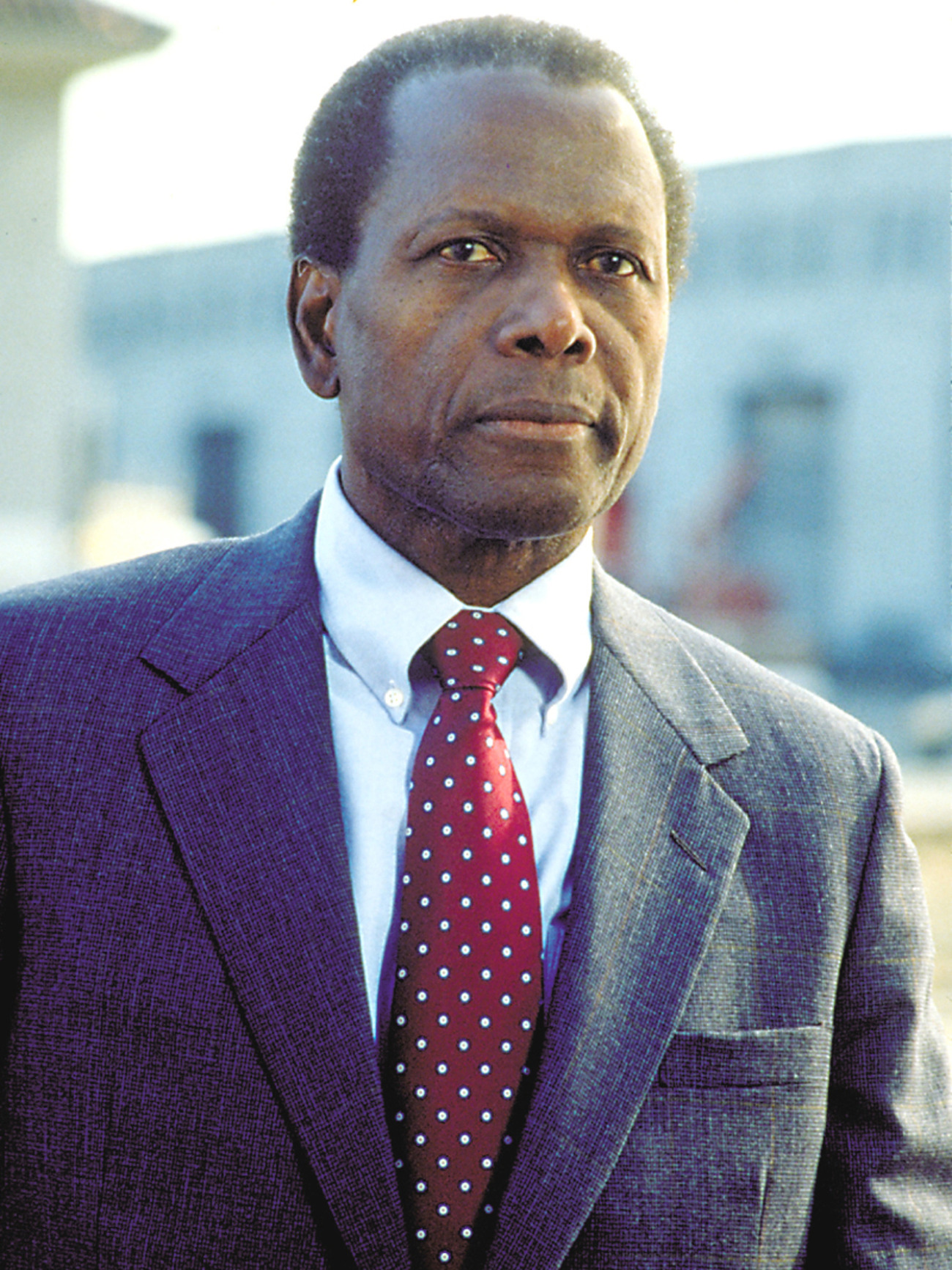 Ktchenor image Sidney Poitier HD wallpapers and backgrounds photos