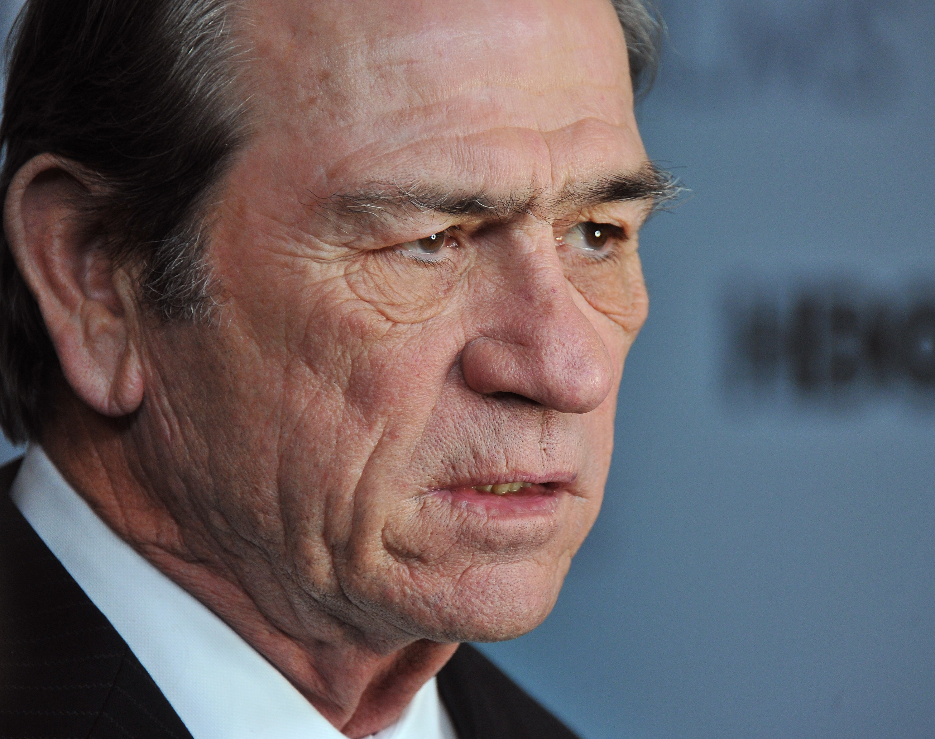 Pictures of Tommy Lee Jones, Picture