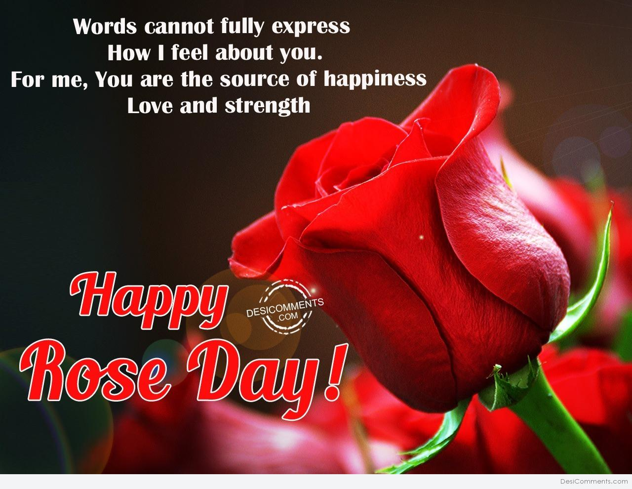 Rose Day Pictures, Image, Graphics