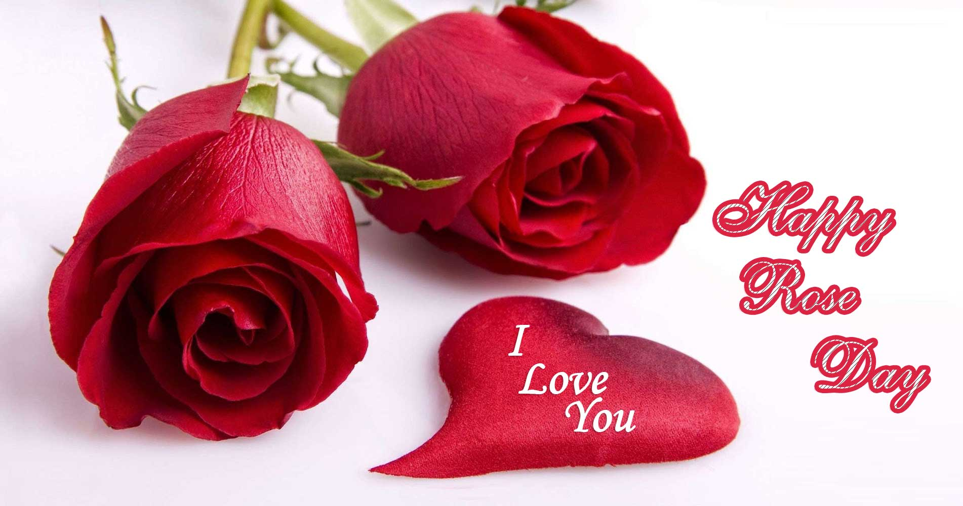 Happy Rose Day Image, Pictures & Wallpapers in HD