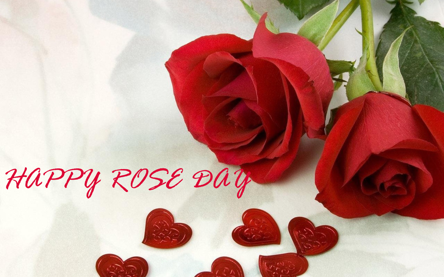 Happy Rose Day 2019 Whatsapp Status Dp Quotes Wishes Sms Hd