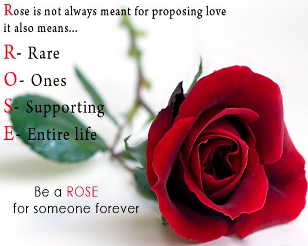 25+ Rose Day Special Image With Full Of Love – Preet Kamal