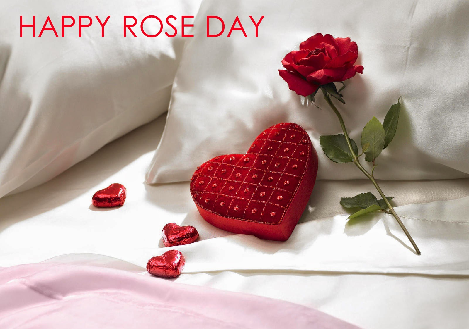 Happy Rose Day Pic Quotes Sms Image Wallpapers 2019