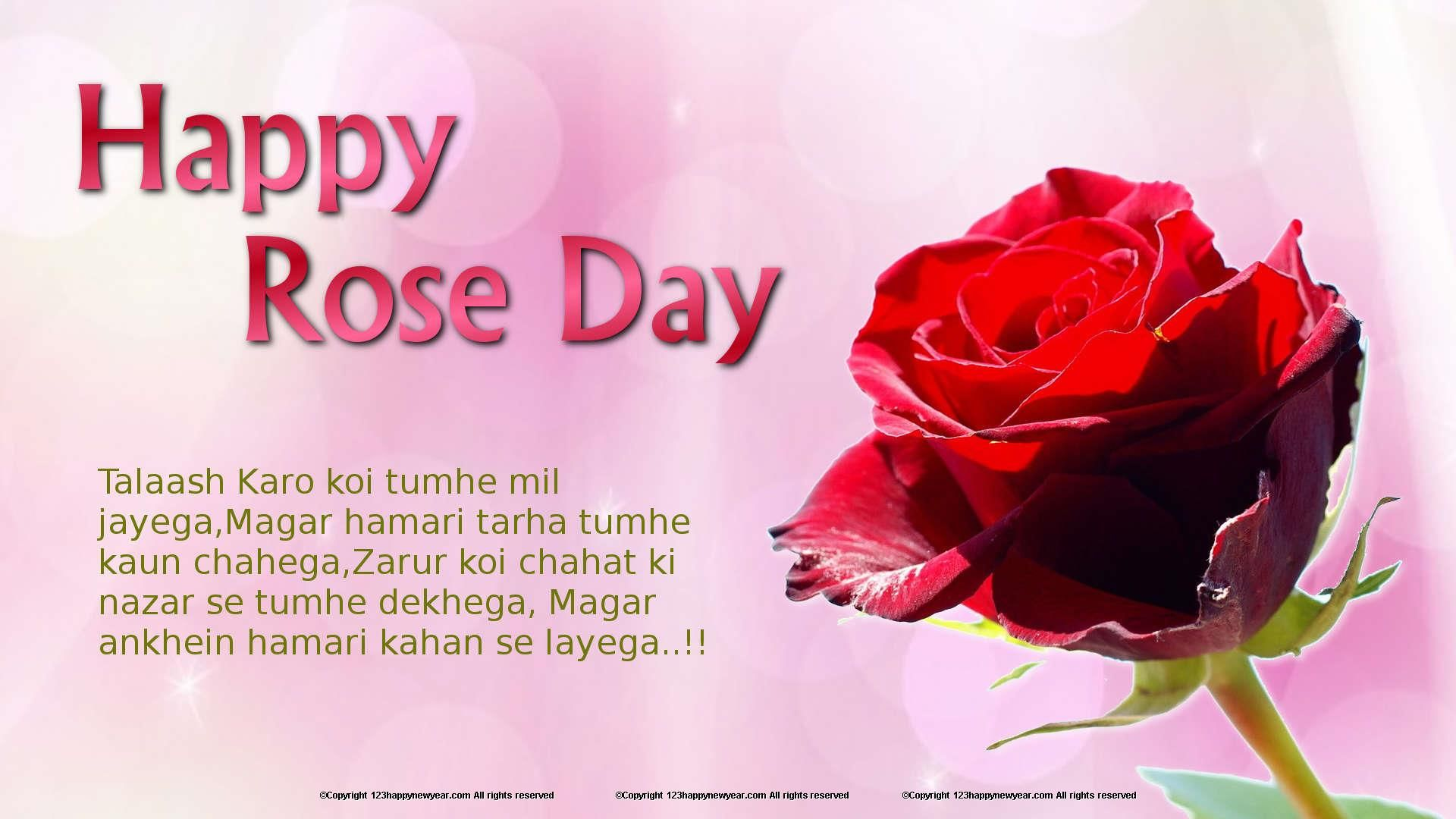 incredible Rose Day Wallpapers