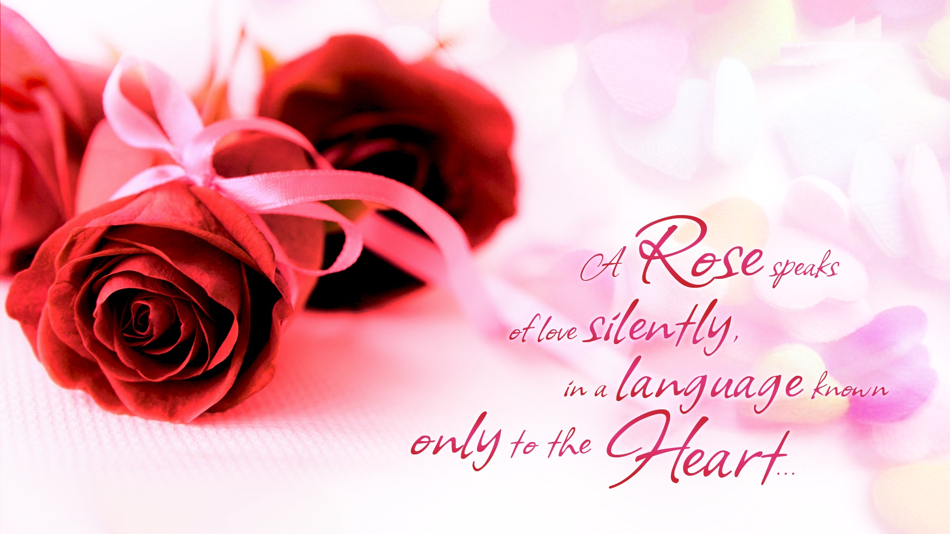 HAPPY ROSE DAY – GIFTS & HD Wallpapers for Rose Day