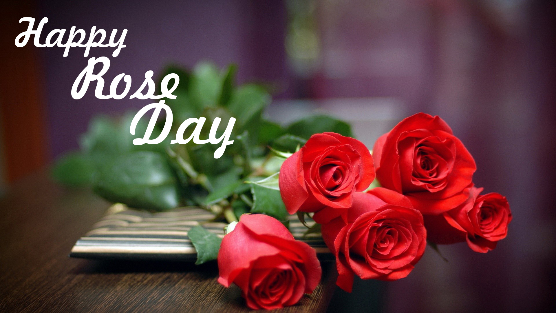 Rose Day Wallpapers and Beautiful Image 2020