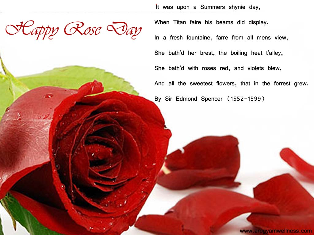 60 Adorable Rose Day 2017 Greeting Pictures And Image