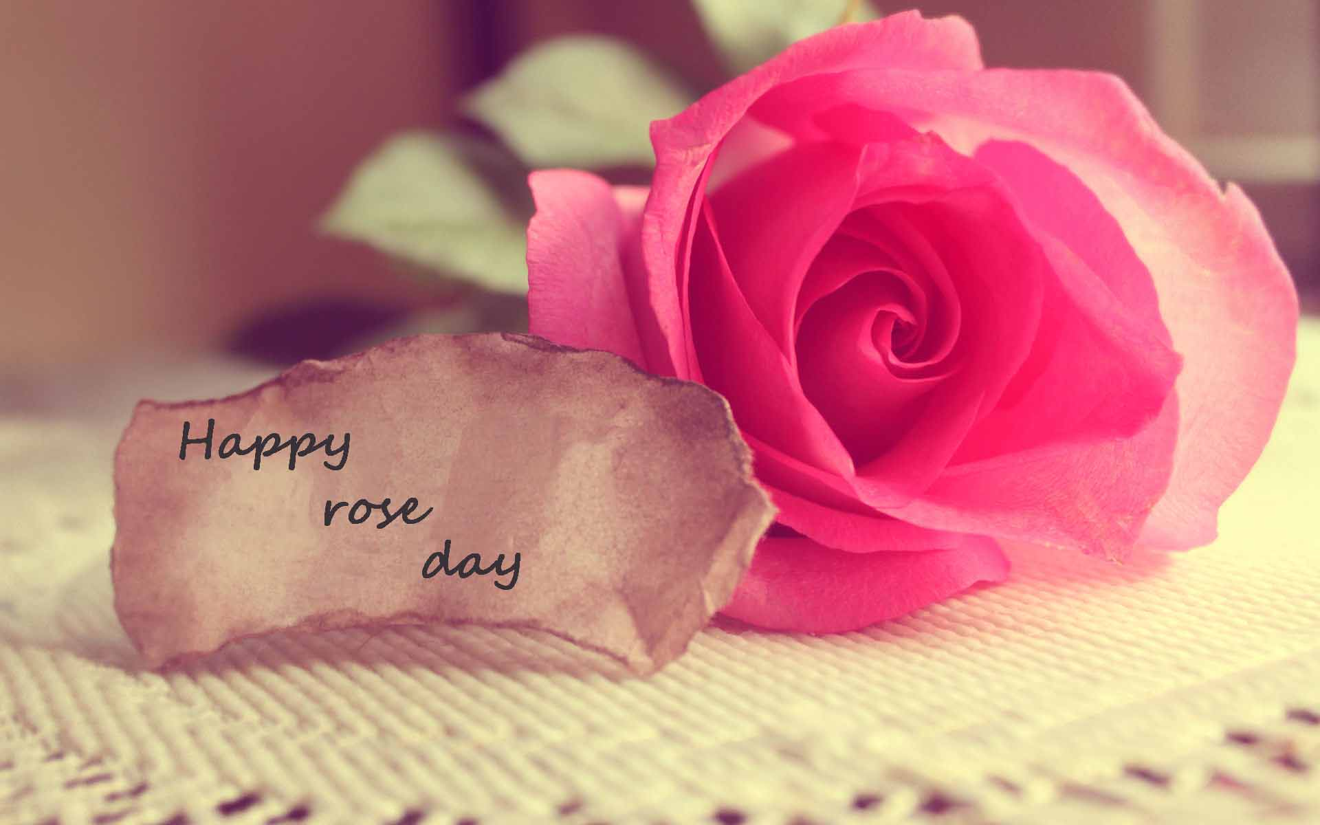 Happy rose day 2018 pink rose hd wallpapers