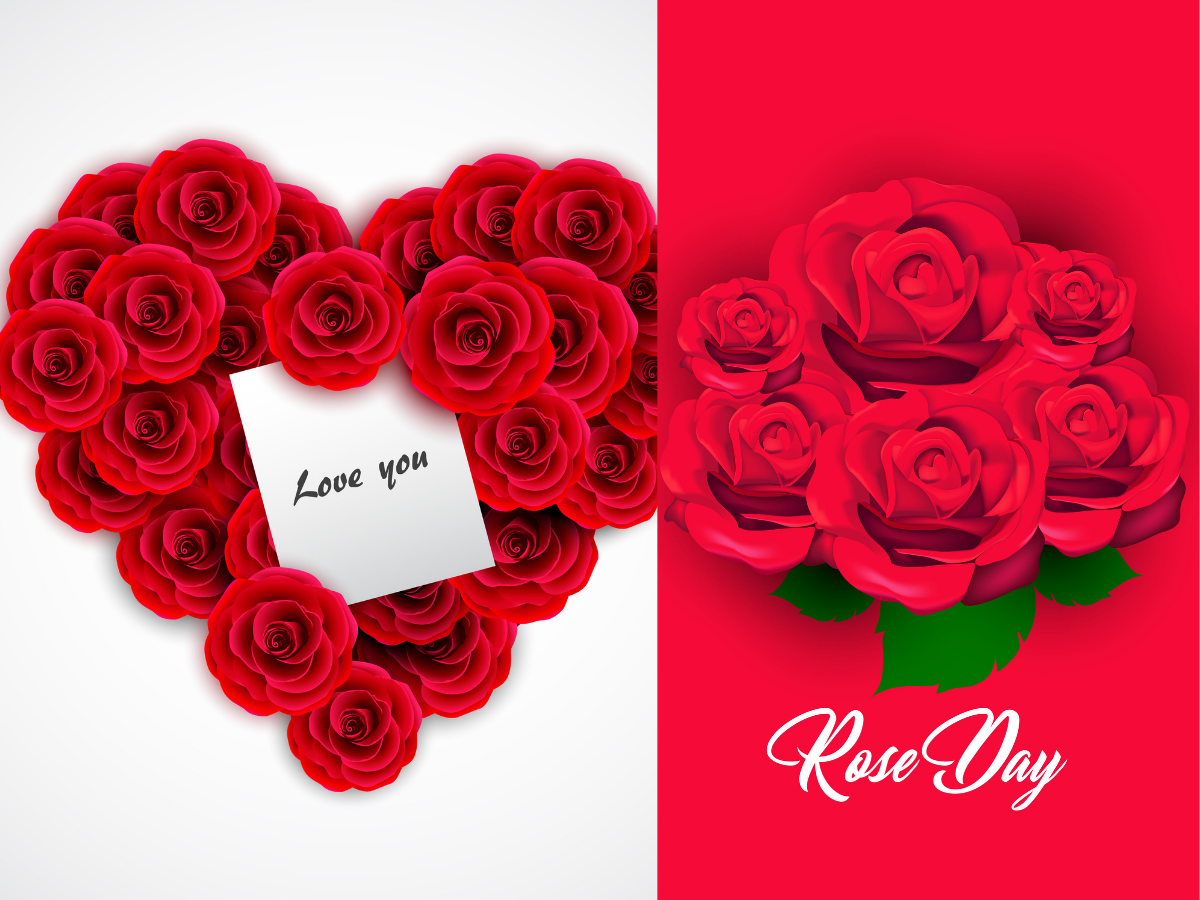 Happy Rose Day 2019: Image, wishes, messages, status, cards
