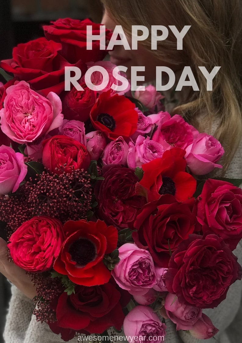 36 Beautiful Happy Rose Day Image to send your lover/husband
