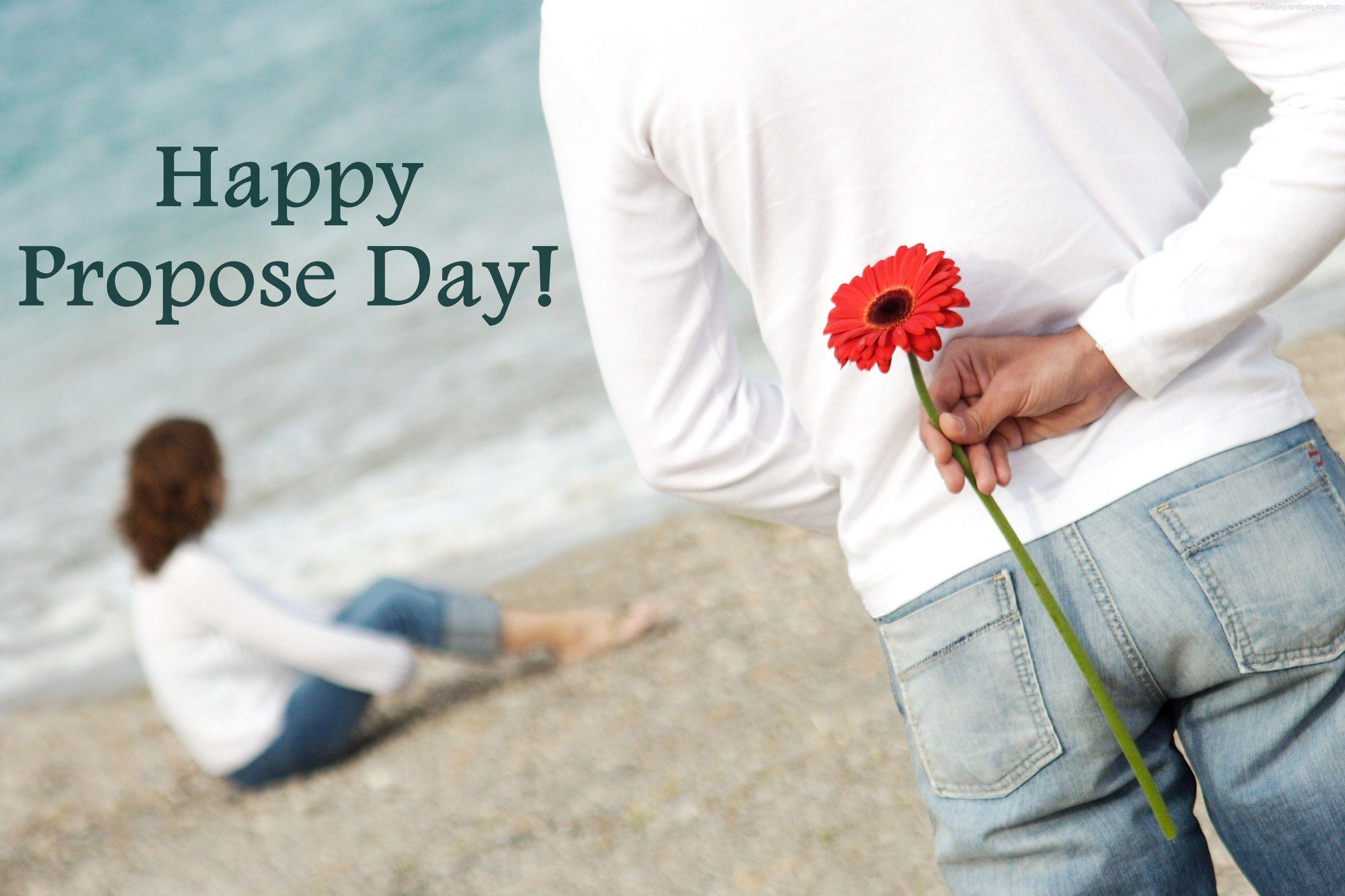 Propose Day Image for Whatsapp DP, Profile Wallpapers – Free