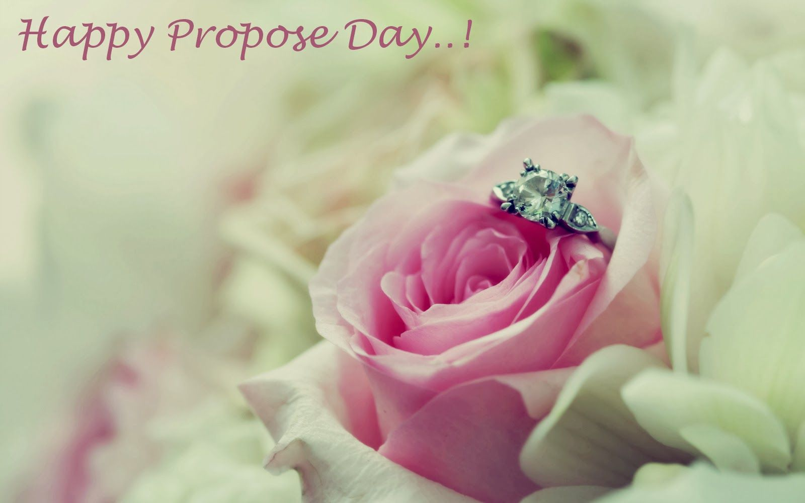 Propose Day 2016 Wallpapers and Proposal image