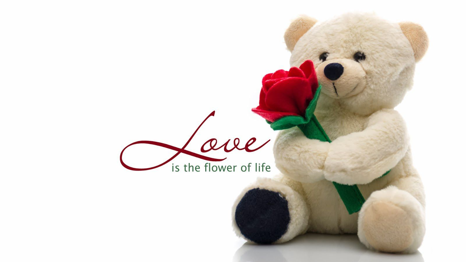 Happy Valentines Day: Happy Hug Day Wallpapers February 1600×900