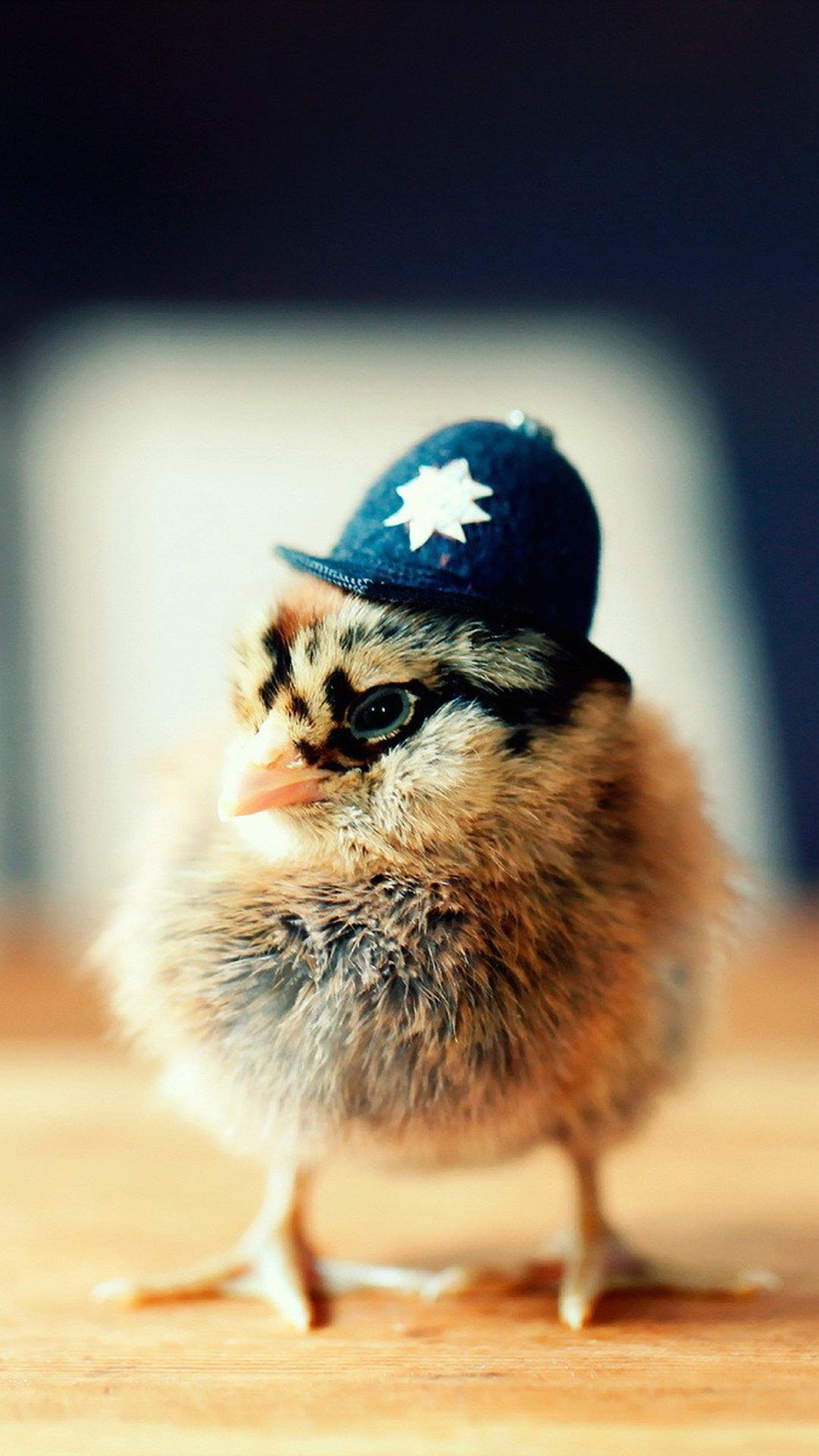 Police chick, so cute~. Cute Animals iPhone Wallpapers
