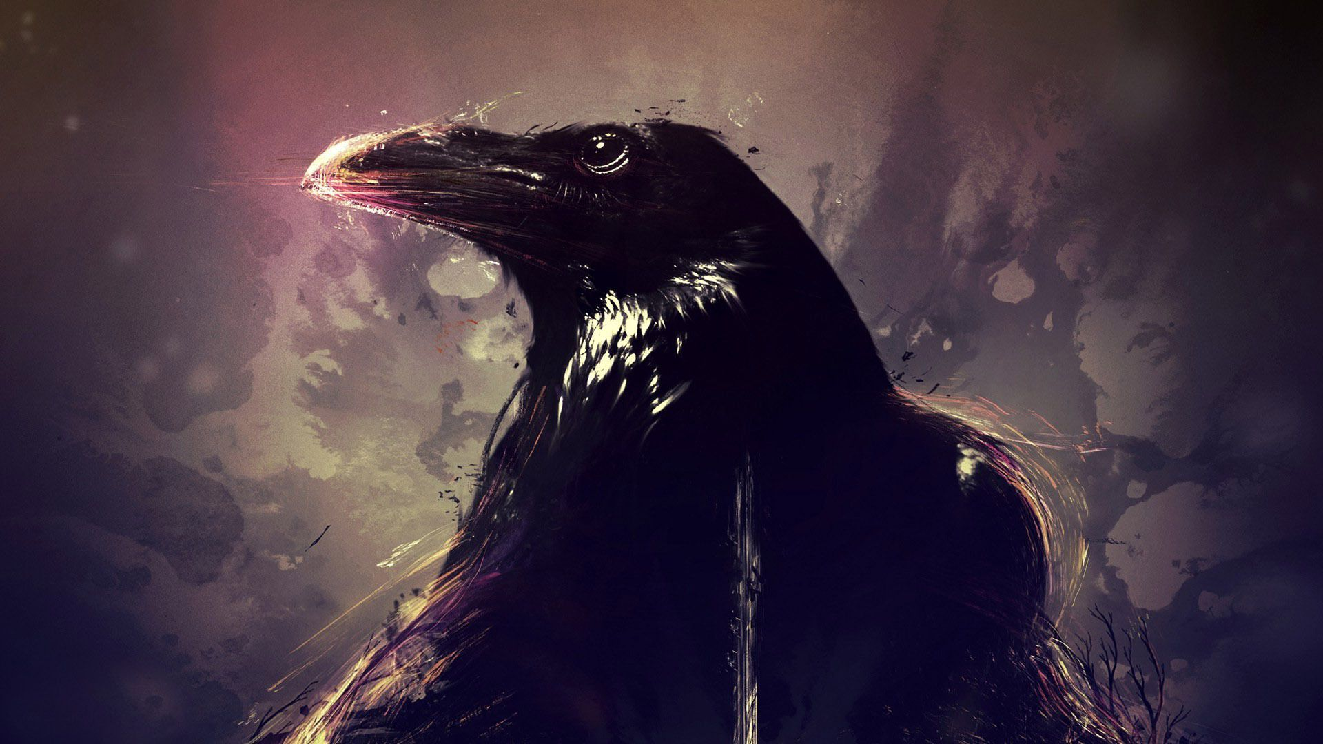 Free Download Crows Wallpapers