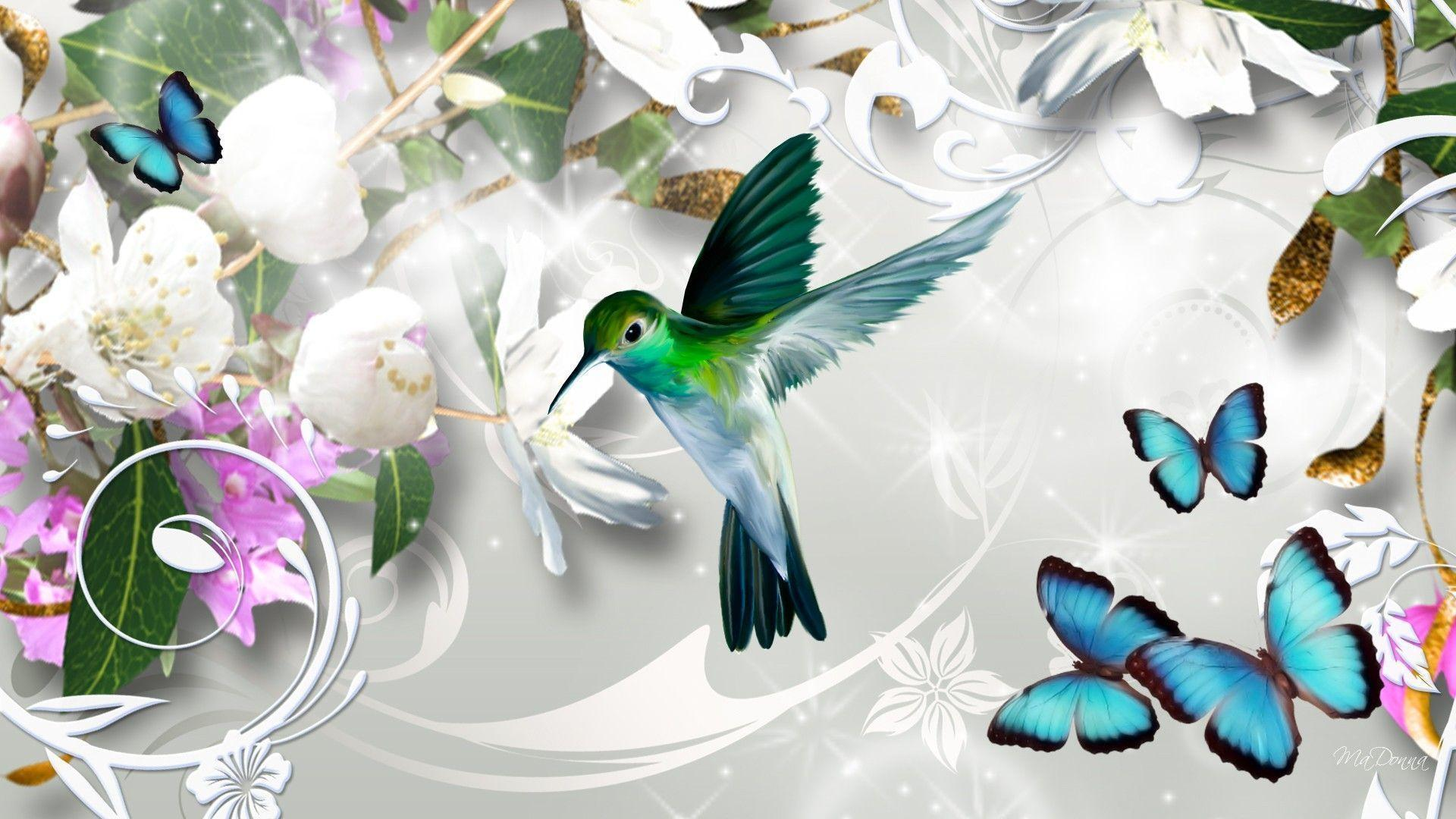 Animals For > Hummingbird Wallpapers Abstract