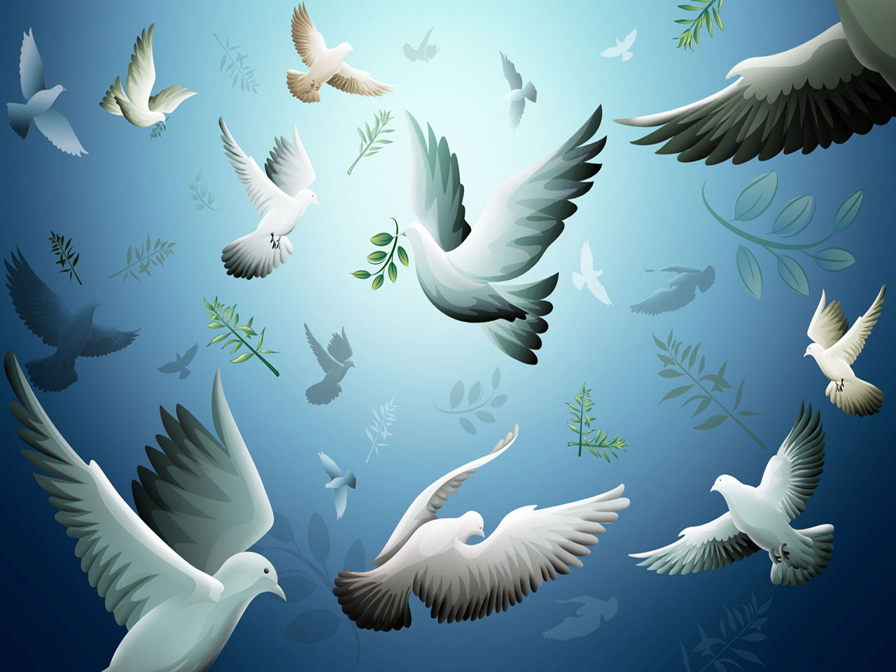 Animated Nature Wallpapers Animated Pigeons Wallpapers