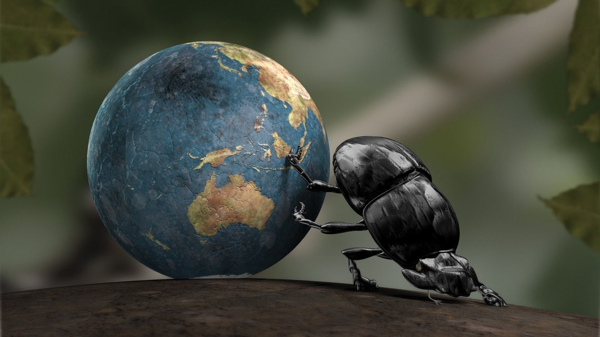 Earth, Insect, CGI, Dung Beetle, Crabs Wallpapers HD