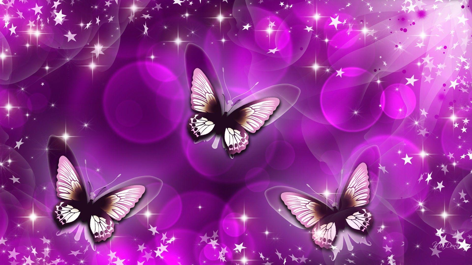 Purple Butterfly Abstract Wallpapers