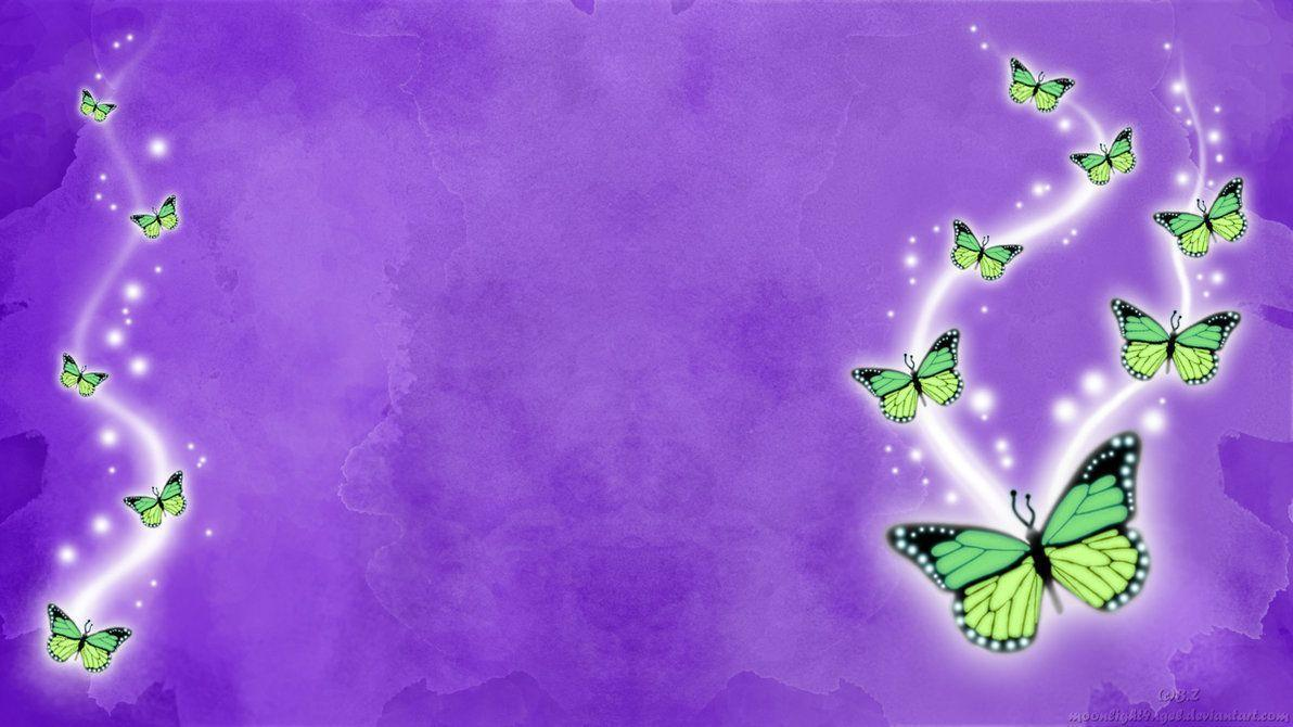 Latest Butterfly HD Wallpapers Download