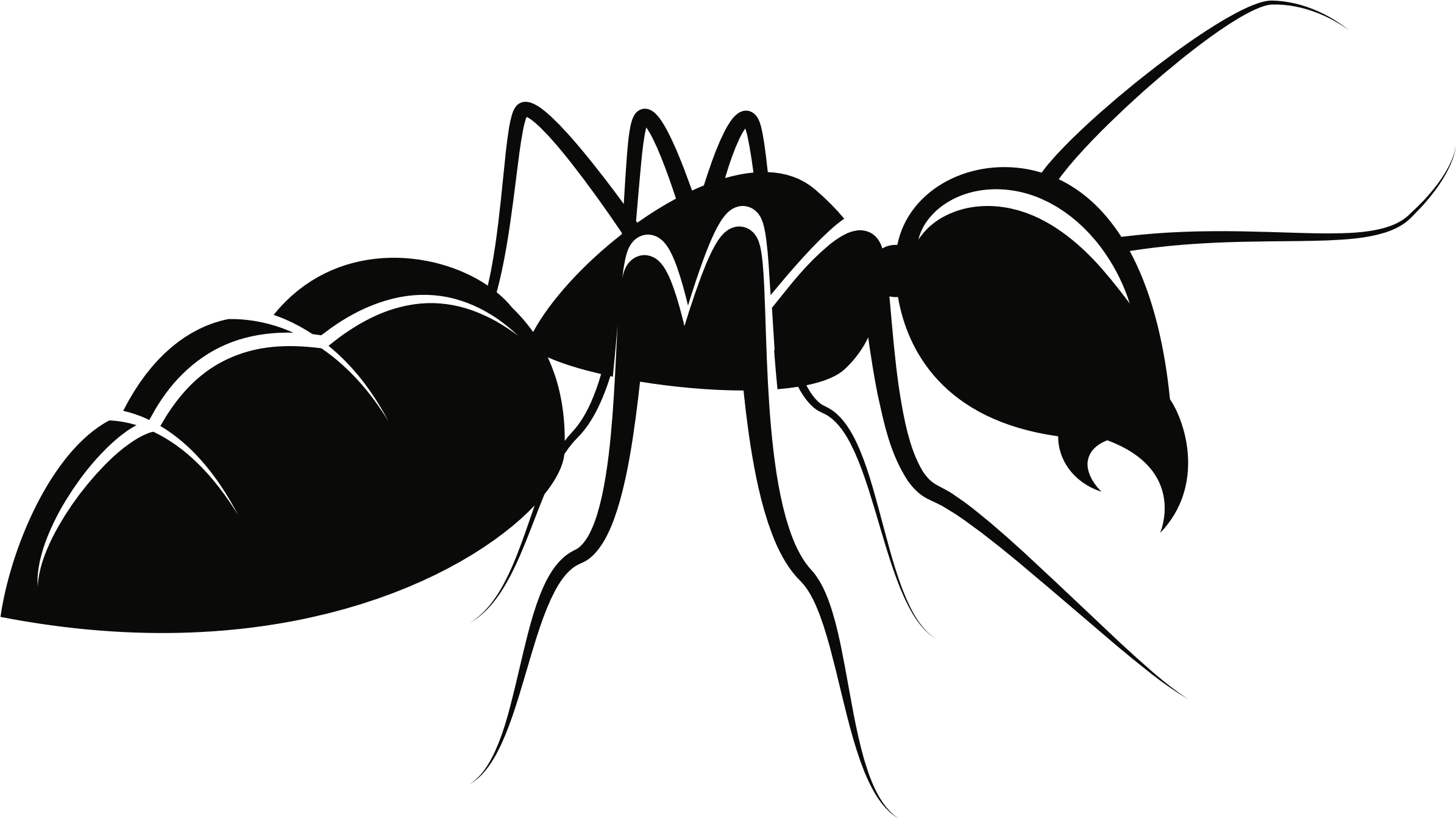 Insect clipart carpenter ant, Insect carpenter ant