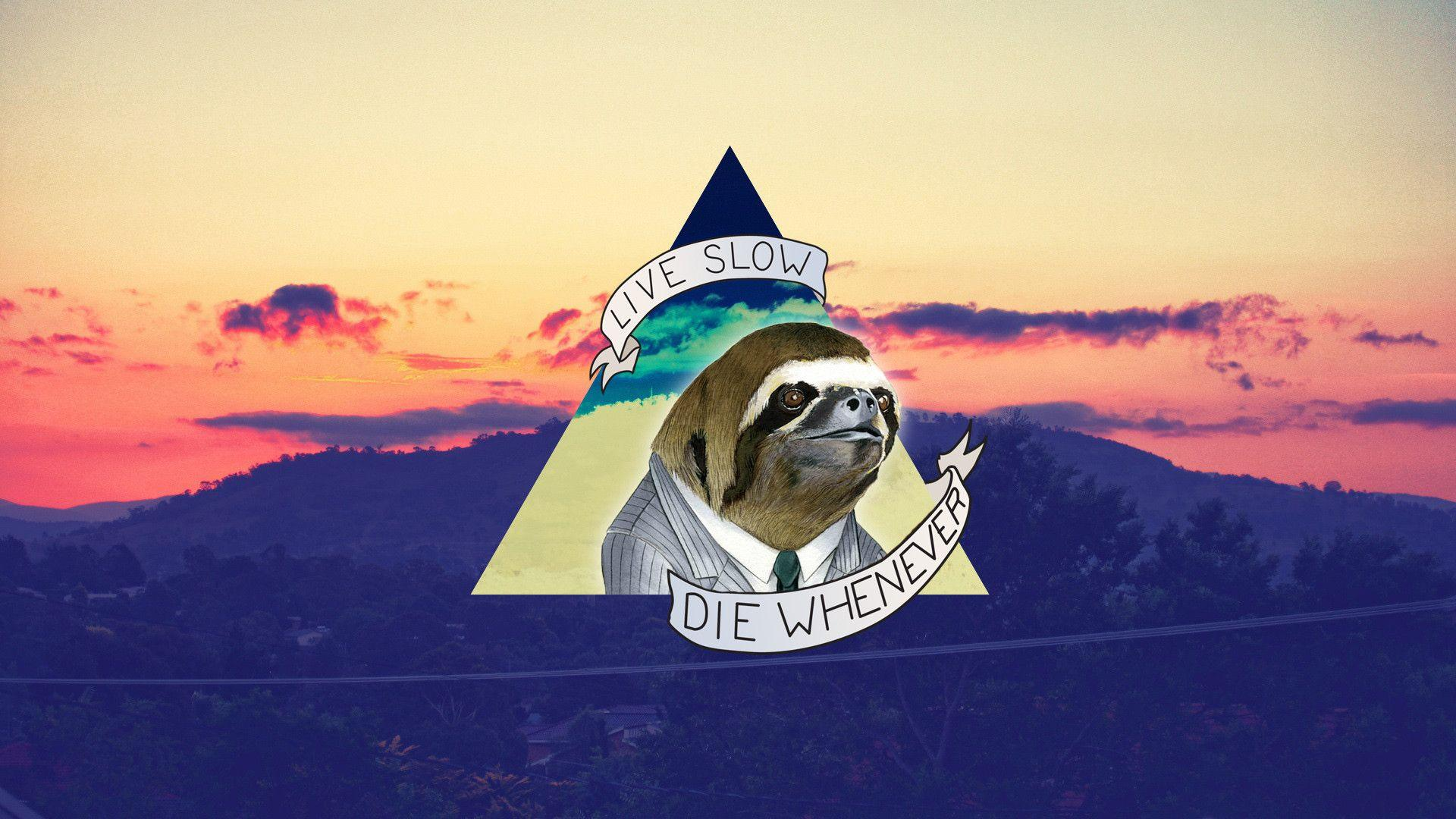 Sloth wallpapers is best wallpapers : sloths