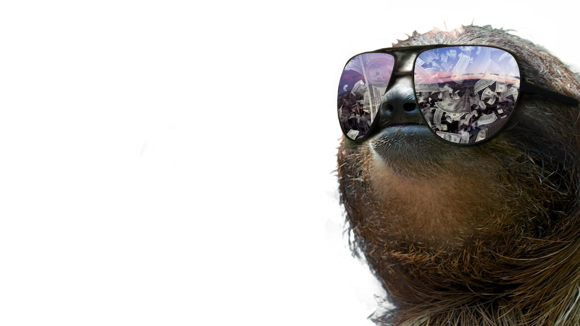 Sloth Wallpapers Design Ideas ~ A Very Slothy Wallpapers Xpost From