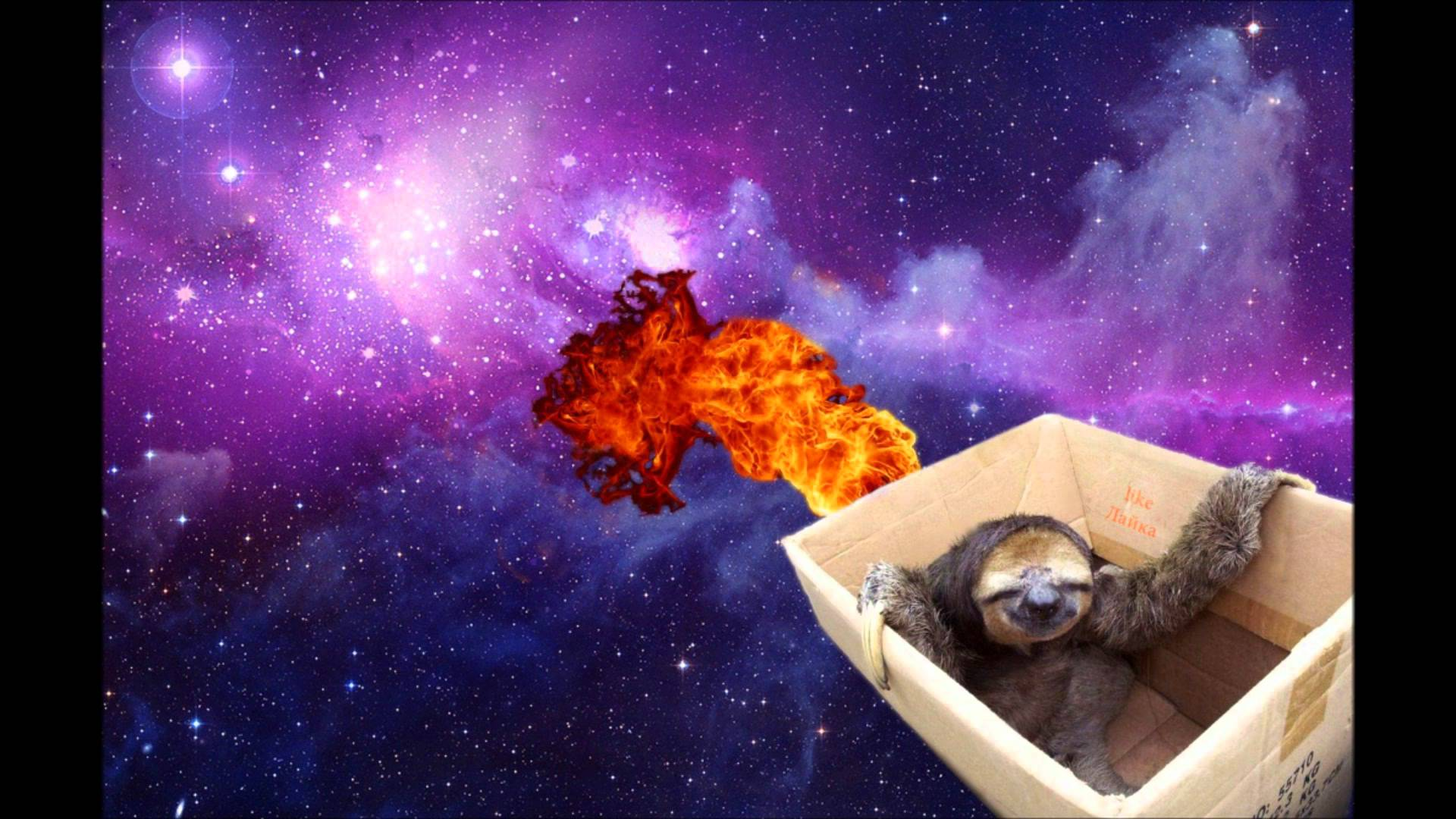 Image For > Space Sloth Wallpapers