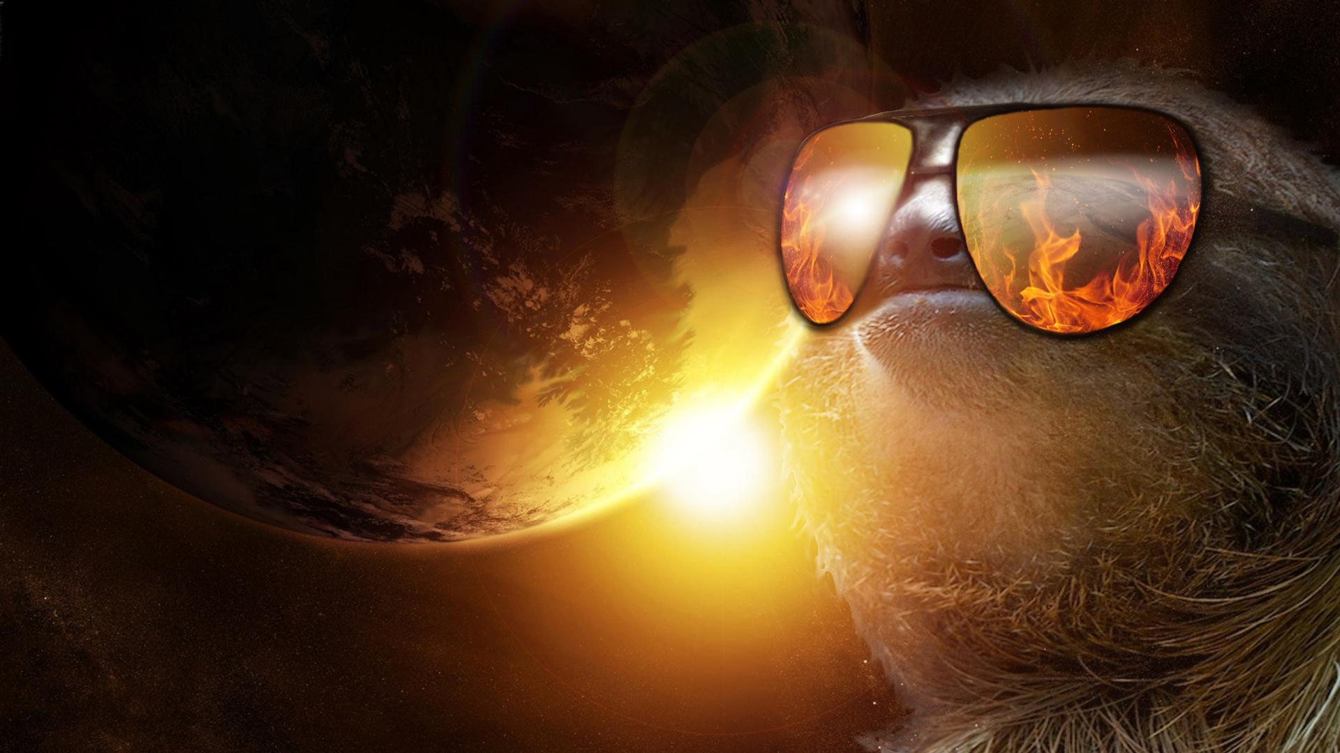 Animals For > Sloth Sunglasses Wallpapers