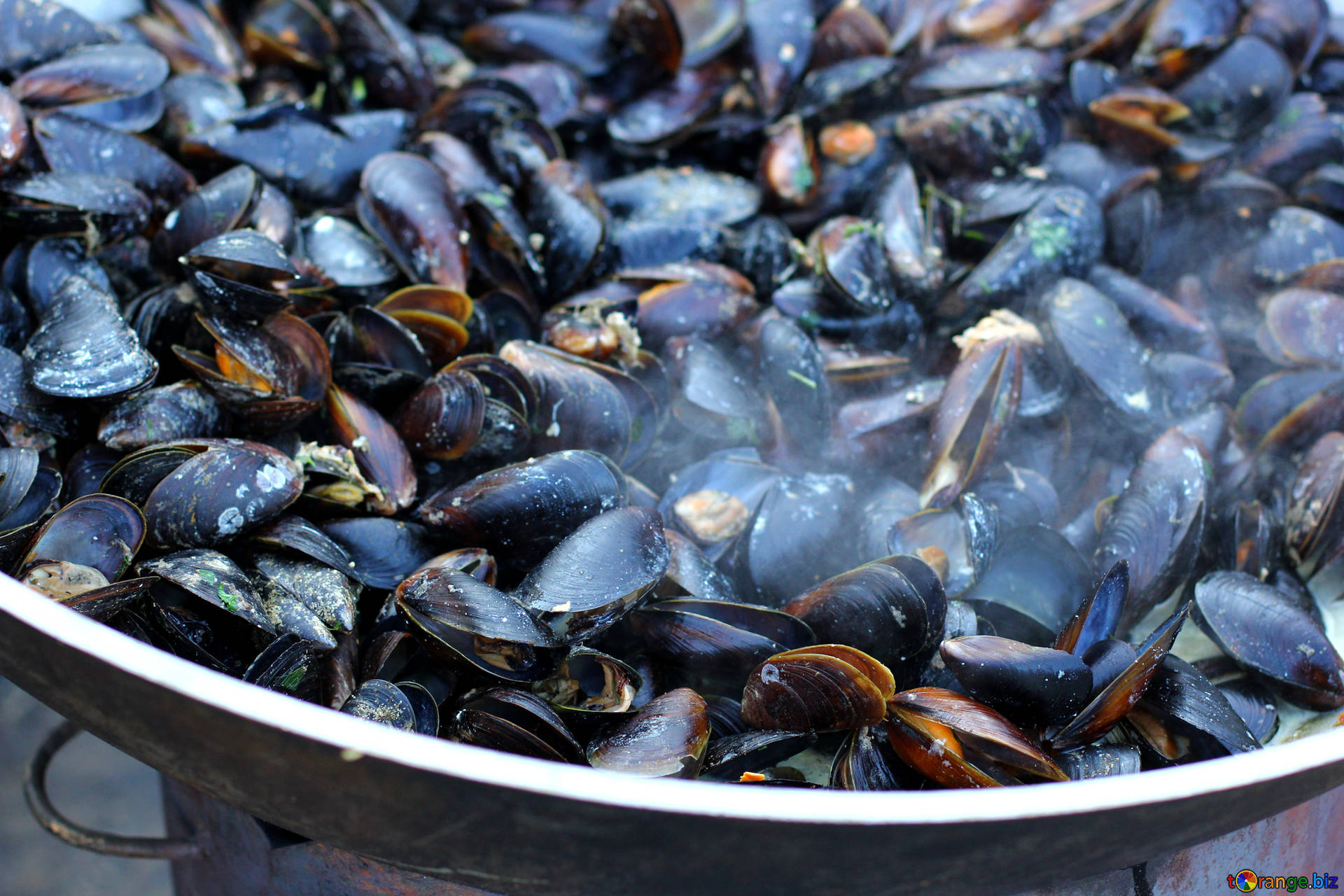 Seafood mussels fried trade № 47511