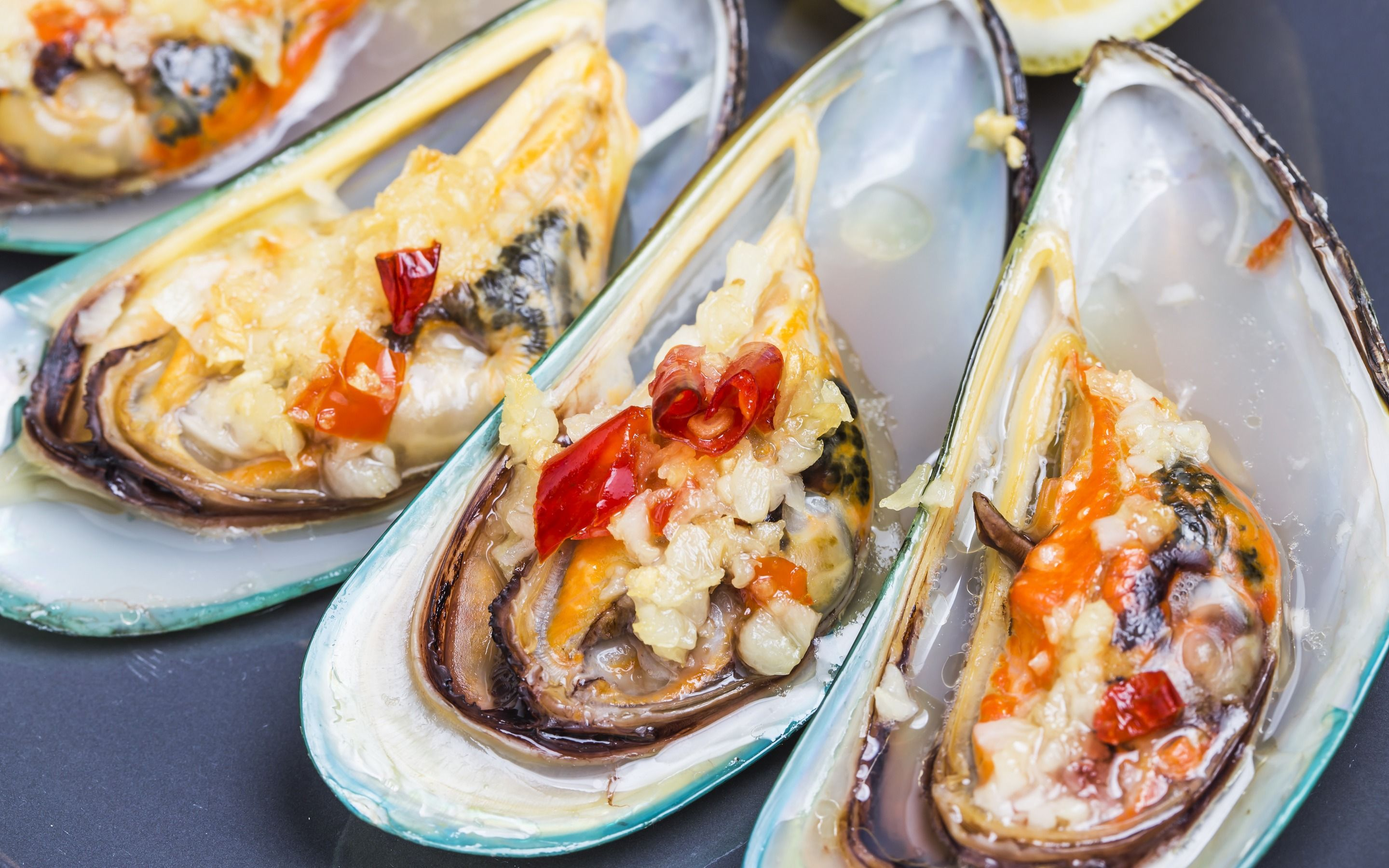 Download wallpapers oysters, mussels, seafood, fish dishes