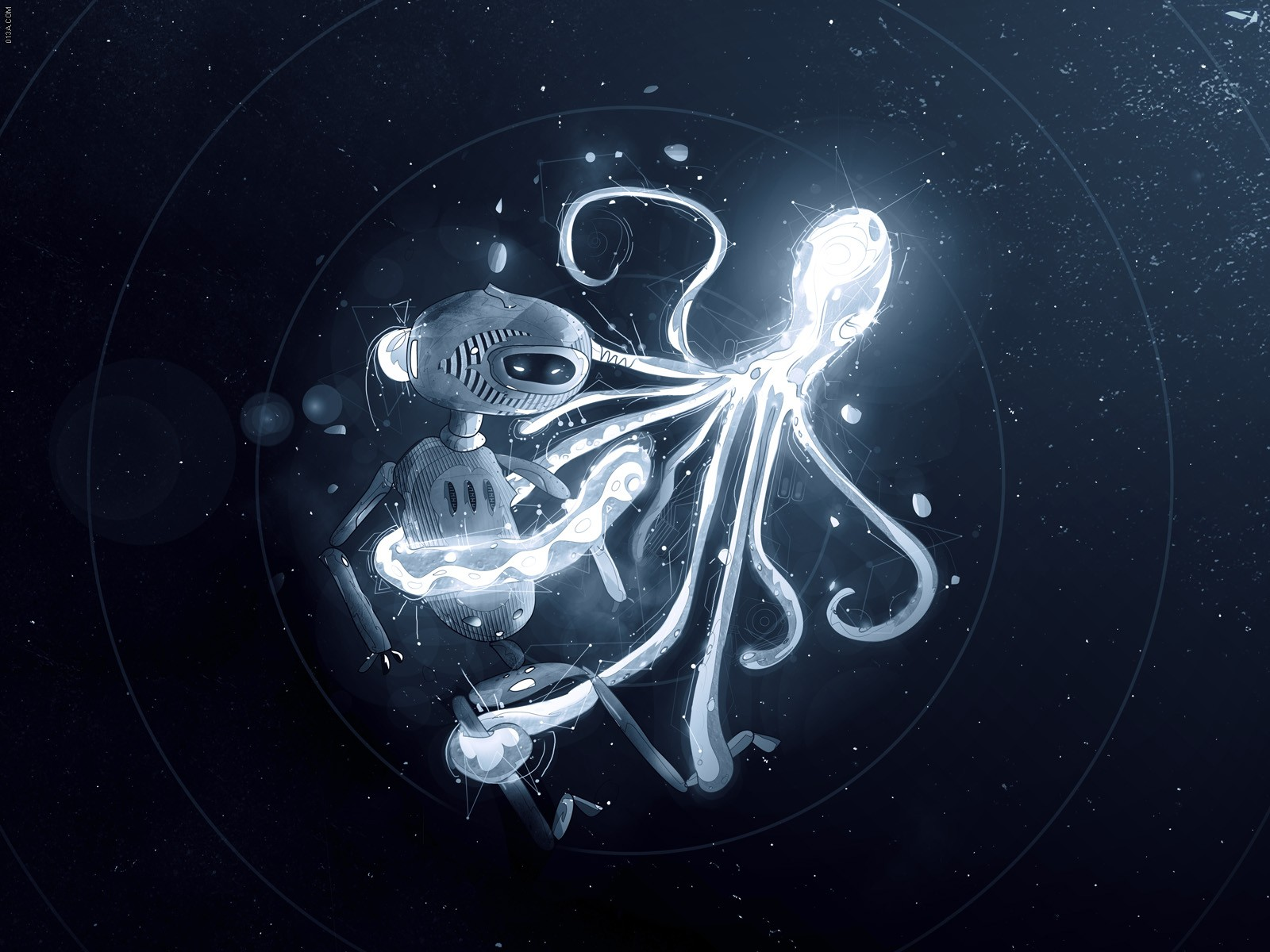 Octopus Wallpapers Free Download