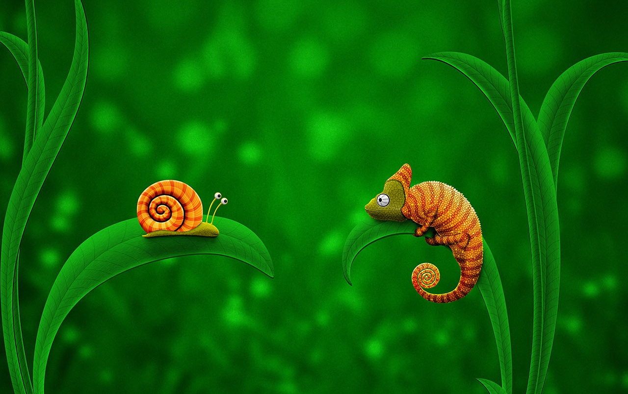 Snail and chameleon wallpapers