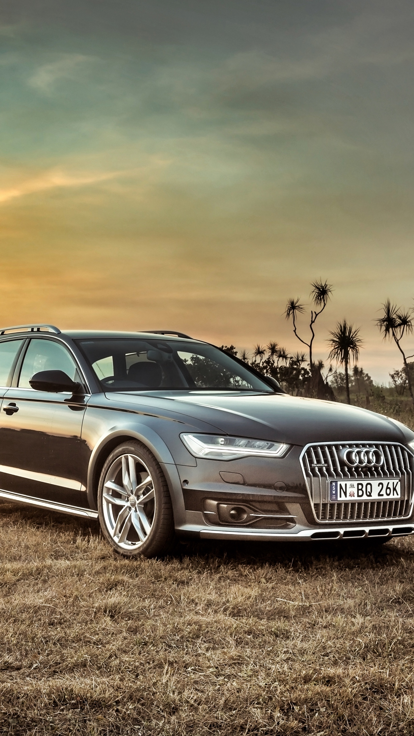 Download wallpapers 1350x2400 audi, a6, allroad, side view, hdr