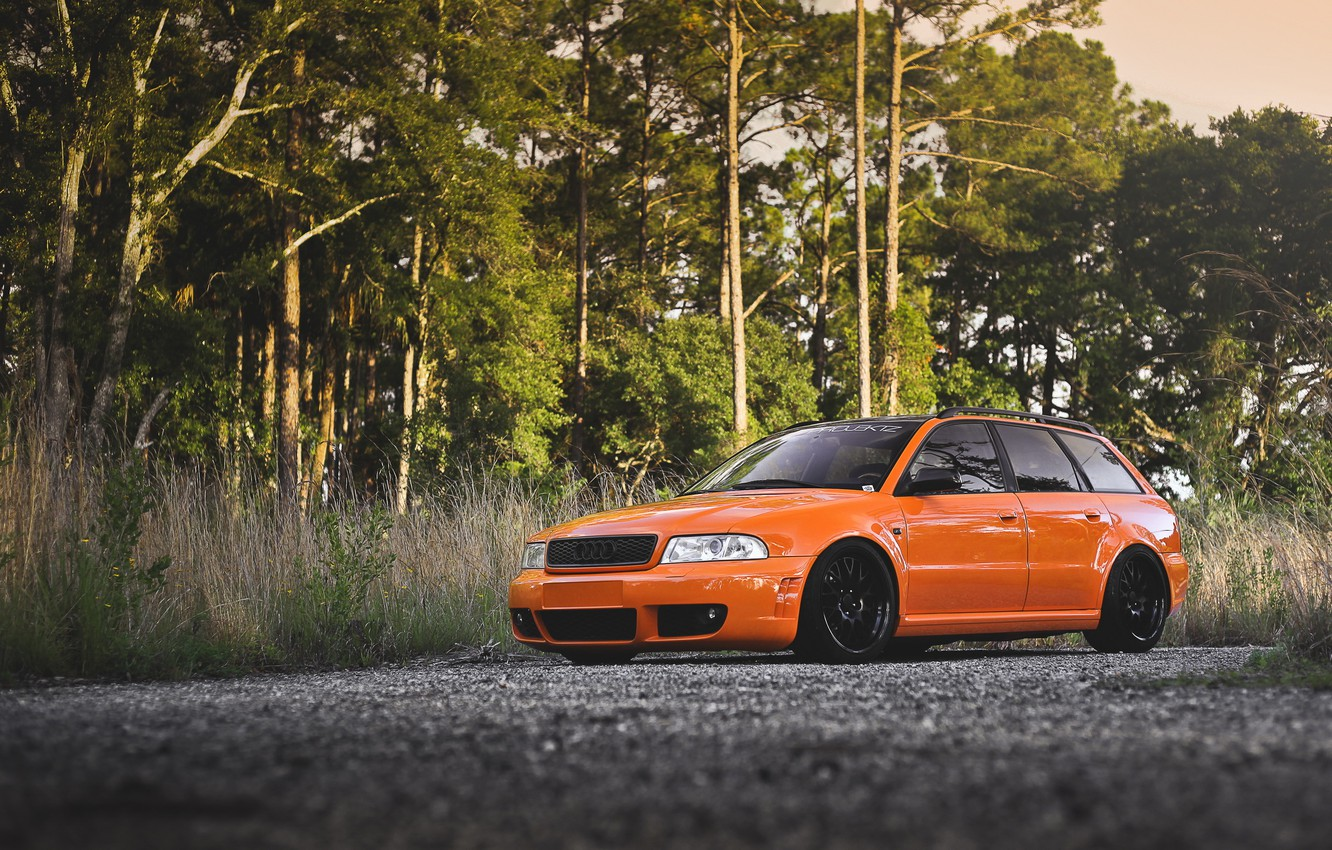Wallpapers forest, trees, Audi, tuning, universal, audi rs4 image