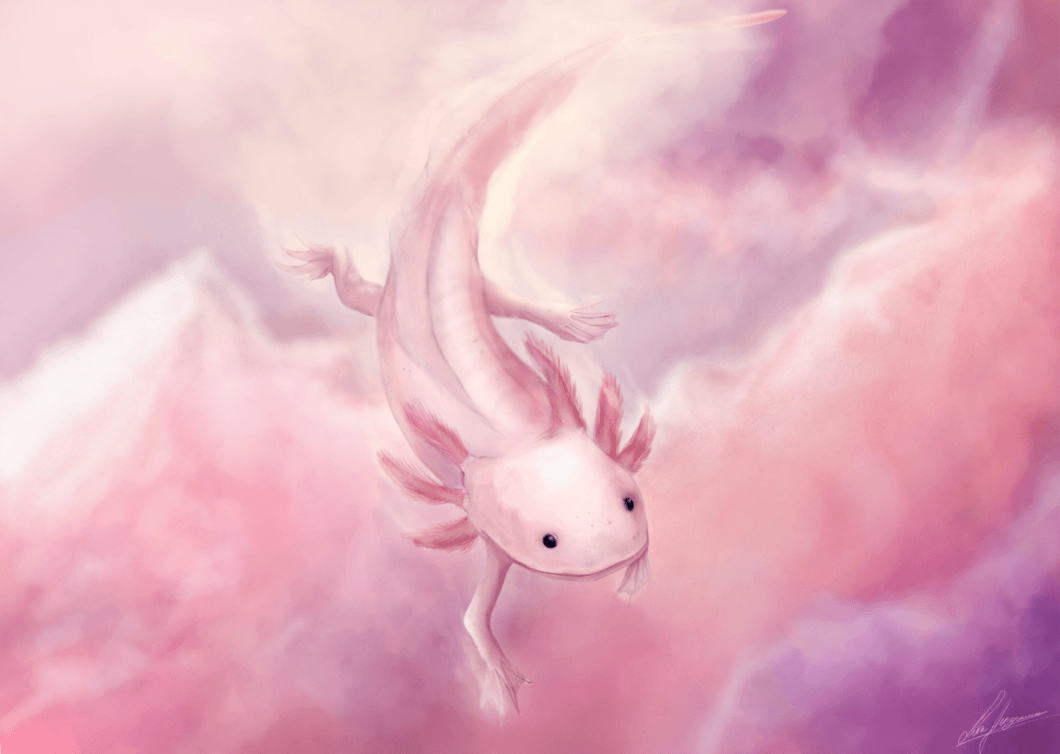 Animals Anonymous: Axolotl and Olm by Mouselemur