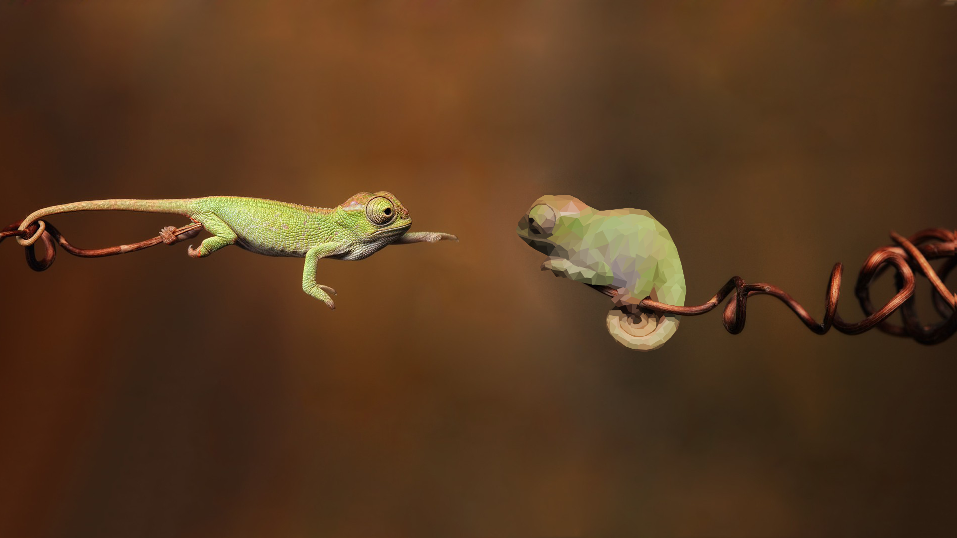 Made a low poly of a chameleon wallpaper. : wallpapers