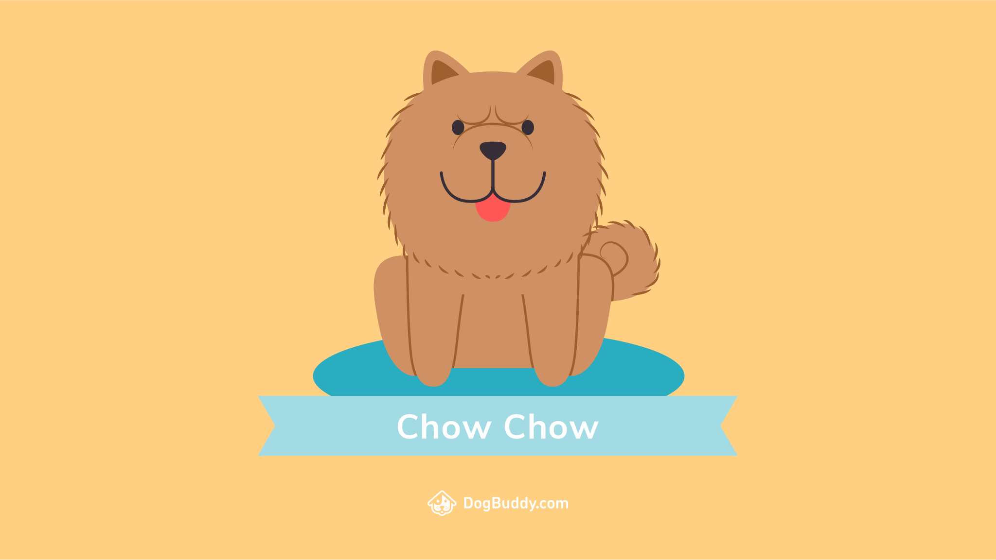 1240295 Chow Chow Wallpapers and Backgrounds