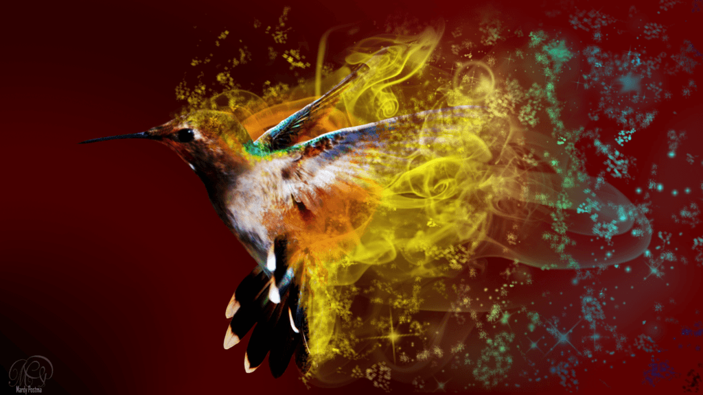 Hummingbird wallpapers by Sothyque