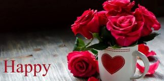 Rose Day Wallpapers.jpg