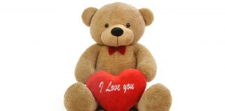 Teddy Day Wallpapers.jpg