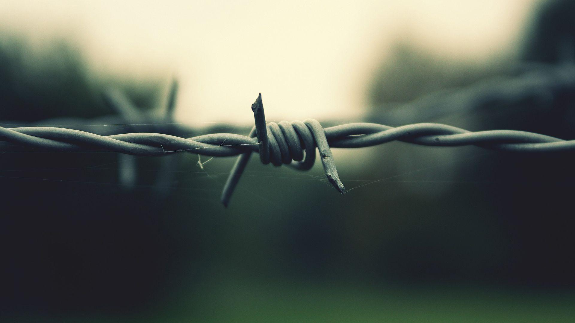 Barb Wire Wallpapers