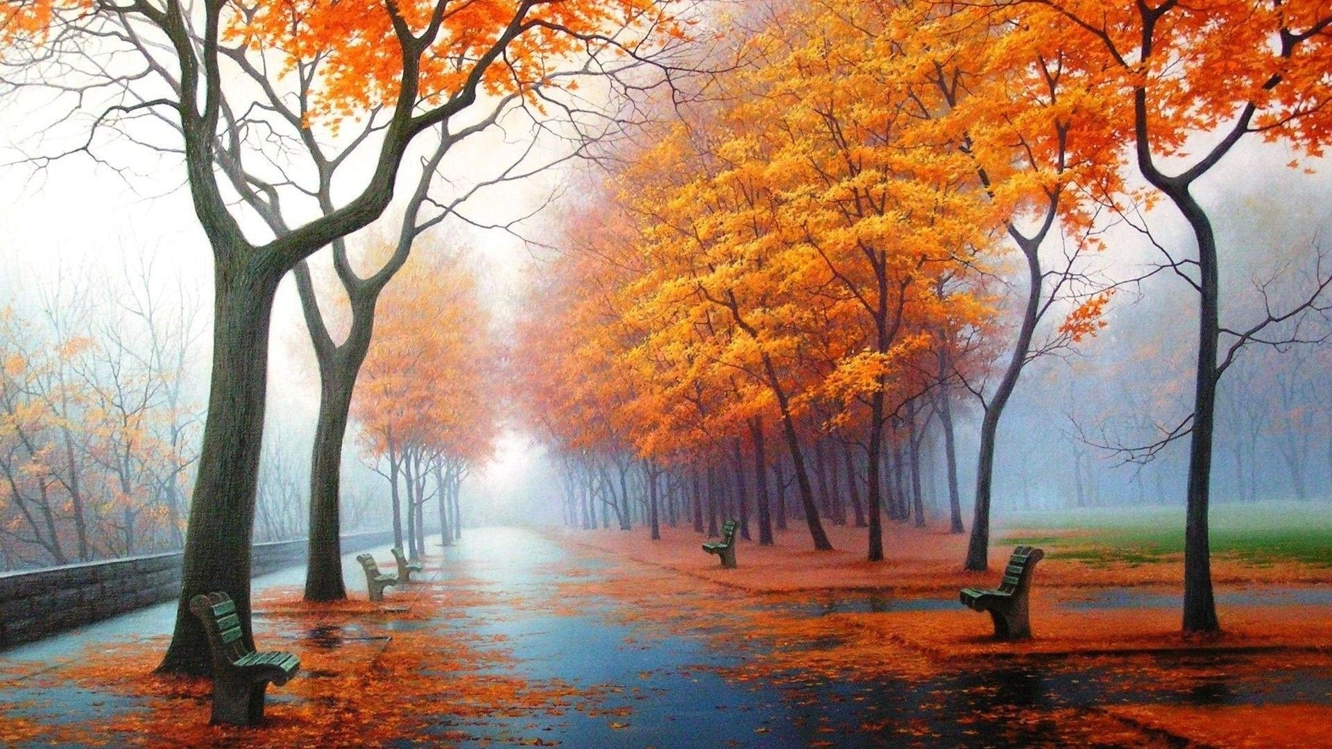 Autumn Rain Wallpapers
