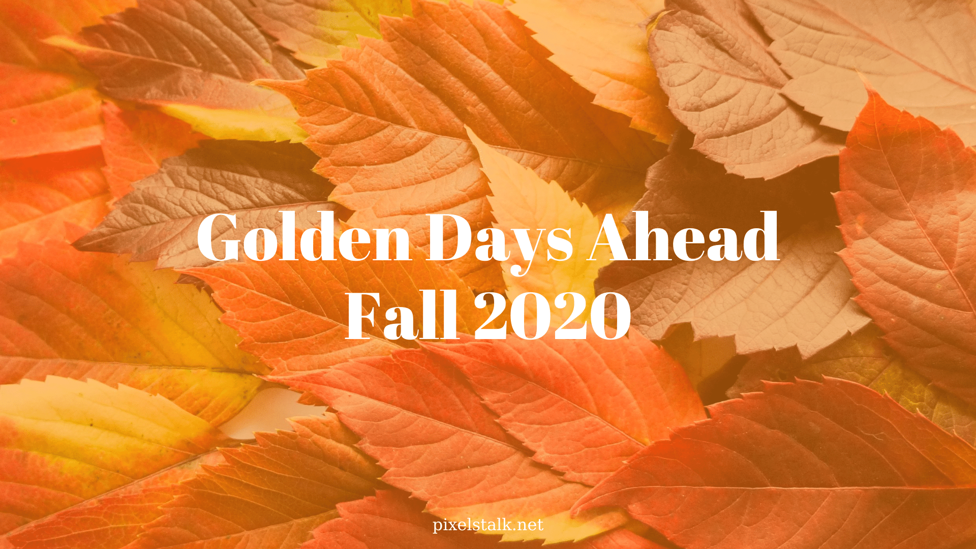 Best Fall 2020 Wallpapers free download for your desktop
