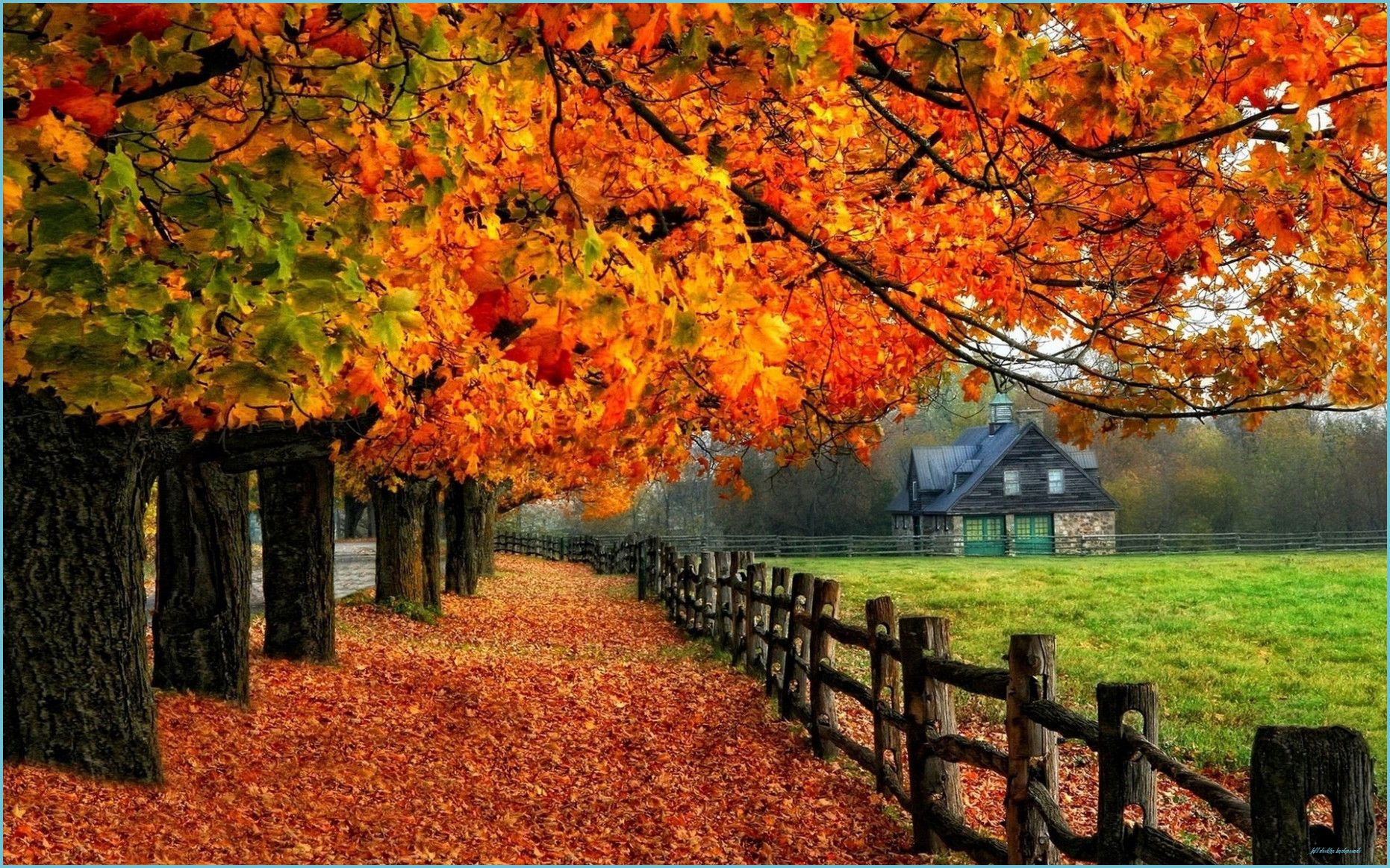 Autumn Wallpapers Examples for Your Desktop Backgrounds