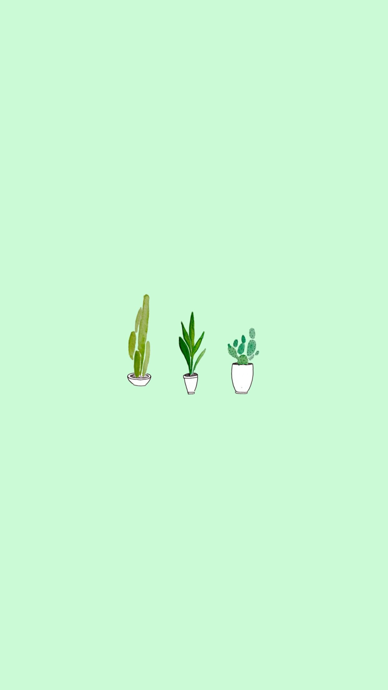 Green Aesthetic iPhone Wallpapers