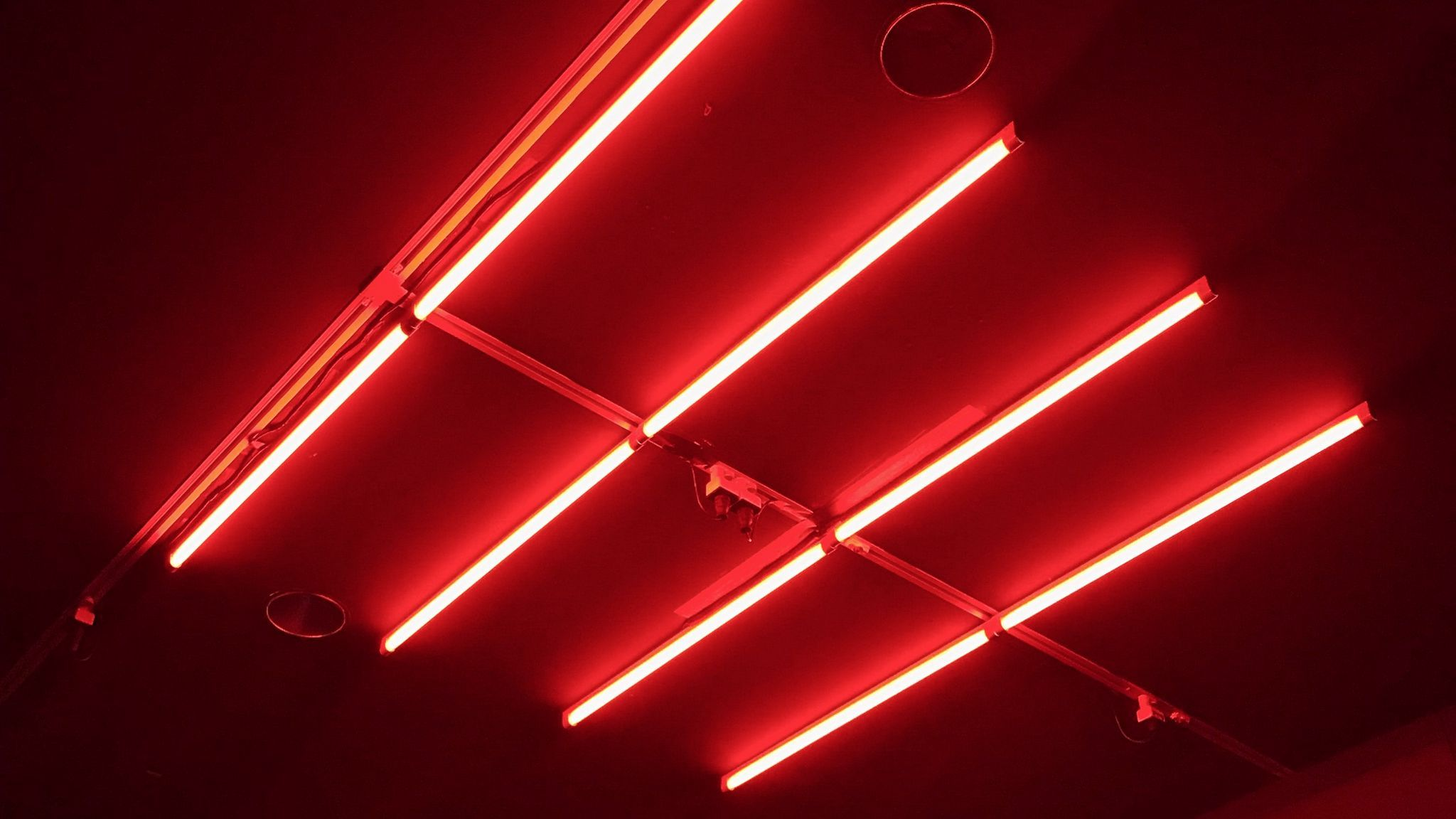 Red Neon wallpapers
