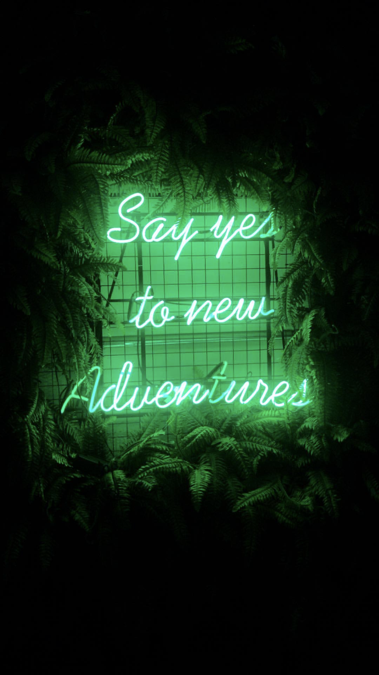 Aesthetic Green Wallpapers Quotes
